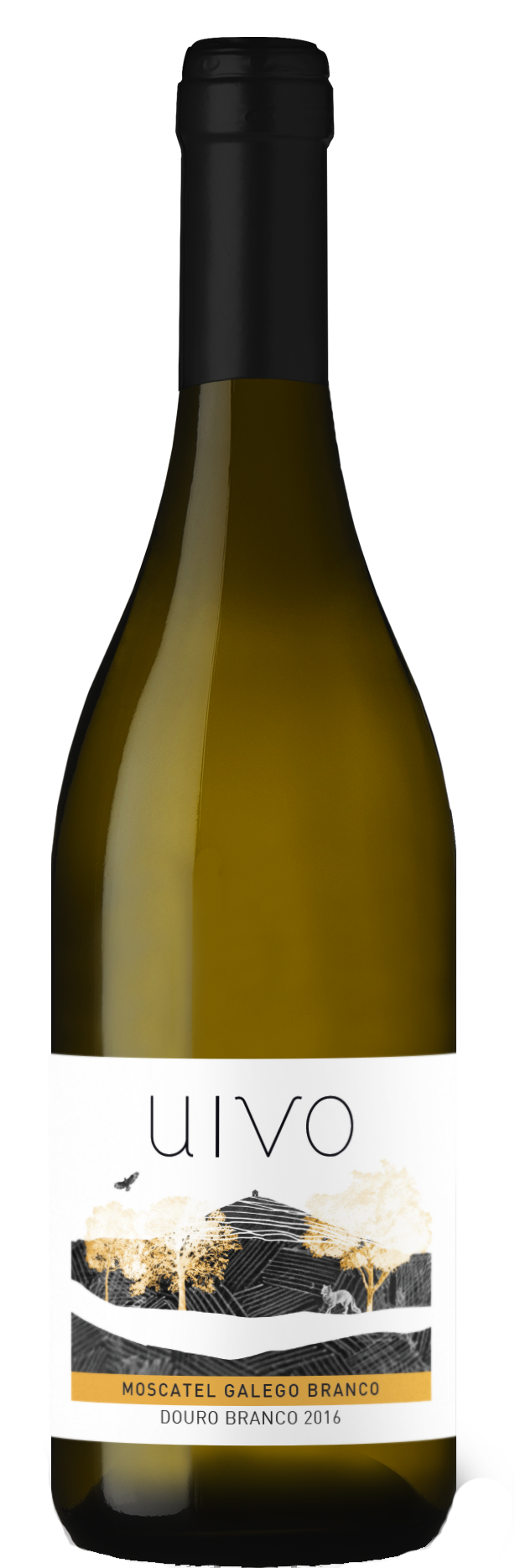 Uivo Moscatel Galego.png