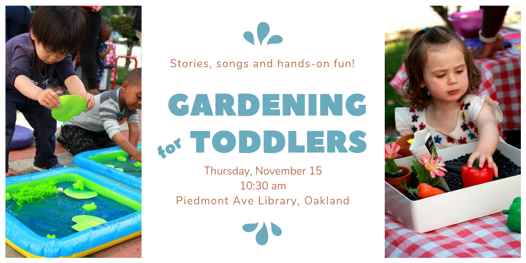 November, 15 2018   Piedmont Avenue Library, Oakland CA