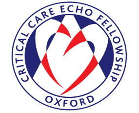 A one-day echo course designed for trainees and consultants in critical care, cardiology, general medicine, emergency medicine and anaesthesia.  Faculty includes BSE council & committee members.  Scanning practice in small groups.  Interactive echocardiography on live models and problem- based video scenarios sessions.