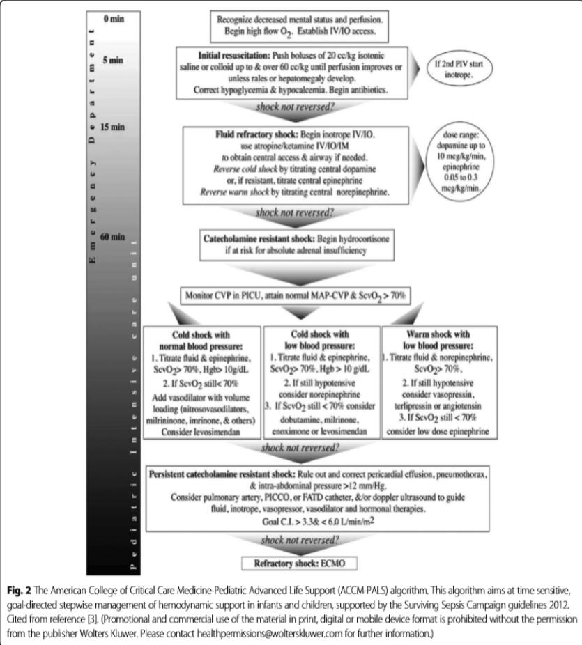2012 Surviving Sepsis Campaign Guideline for Children
