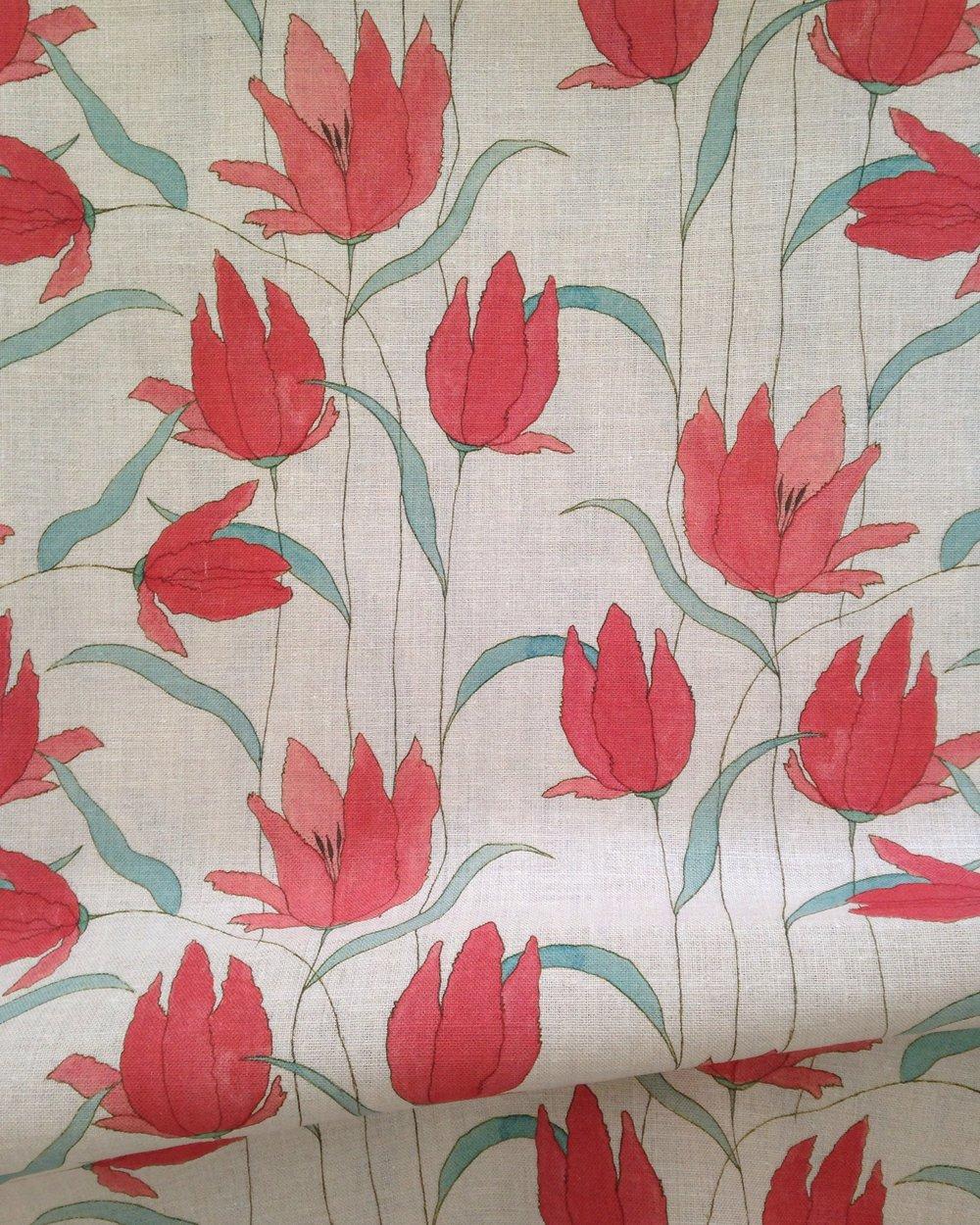 RM Parrot tulip.jpg
