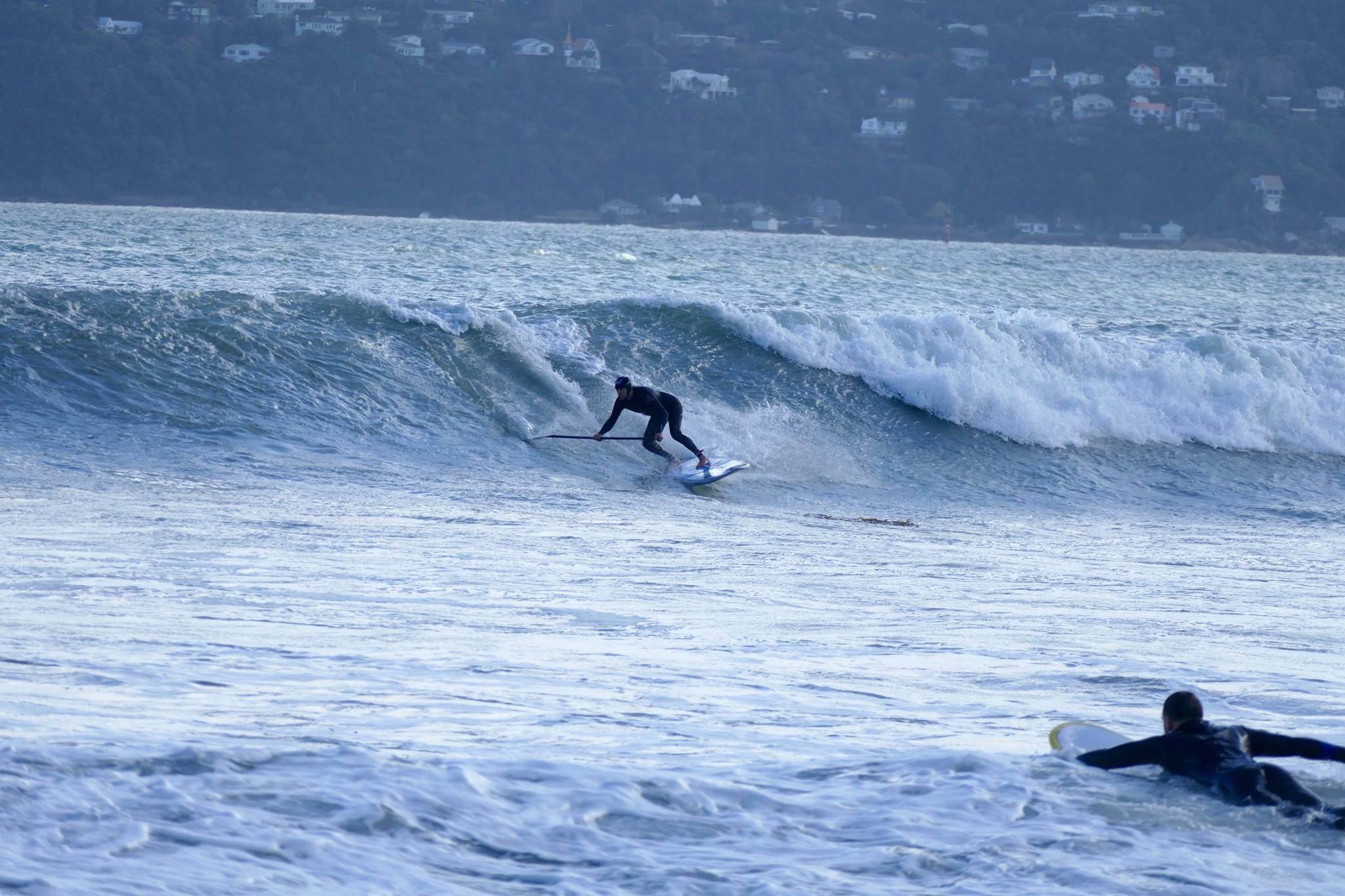 Paddle-Boarding-Lyall-Bay-Wellington