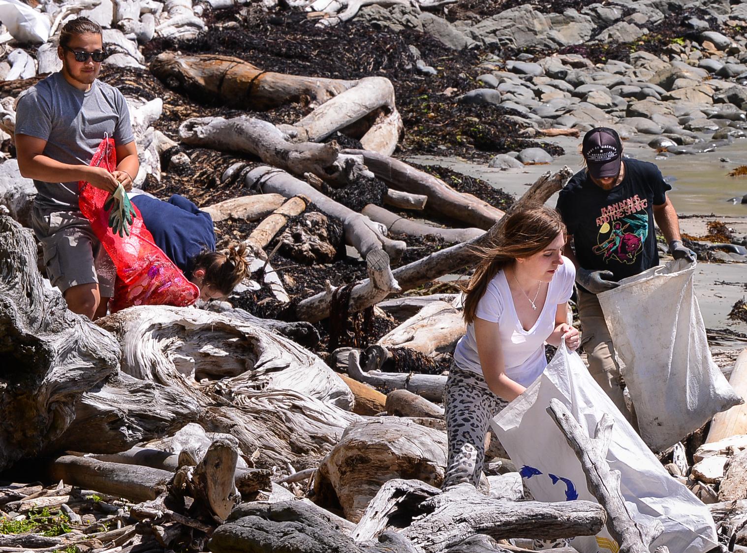 Wellington-beach-clean-NZ