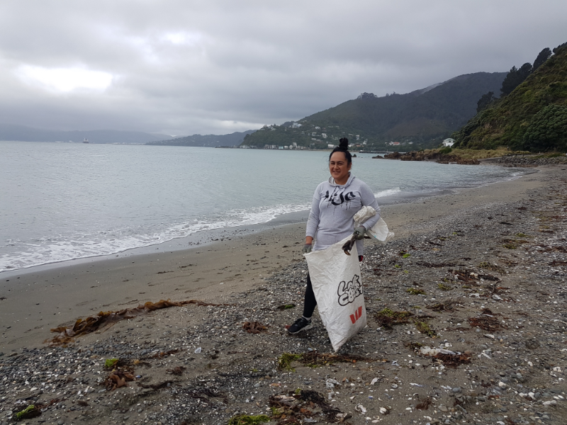 Wellington-lady-cleaning-beach.png