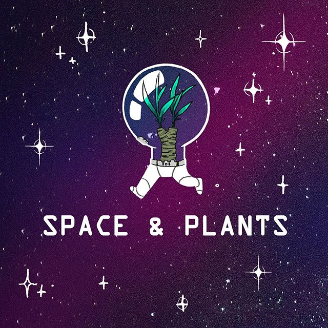 our next zine is themed around 🌌🌌🌱🌱🌱Space & Plants 🌱🌱🌱🌌🌌 check out facebook or discord for more details!! looking forward to everyone's submissions ✨✨✨ #sfusketchclub