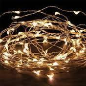 Seed Lights I $5.00 I 2metres I Qty 30 Available in Warm & Cool White