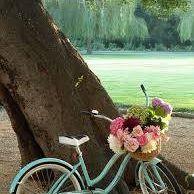 Vintage Bicycle I $75.00