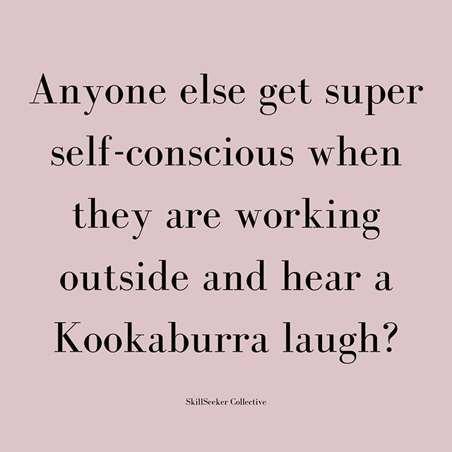 """Seriously, what do you know anyway?"" as I pack up and go inside⠀⠀⠀⠀⠀⠀⠀⠀⠀ ⠀⠀⠀⠀⠀⠀⠀⠀⠀ #ladybrains #skillseeker #fortheloveoflearning #australia #kookaburra #whatareyoulaughingat #selfconscious #melbournebiz #startup #adultlearning #LMBDW #WorkshopsMelborune  #businessadvice #communityovercompetition #girlbossau #SkillSeeker #startup #onlinelearning"