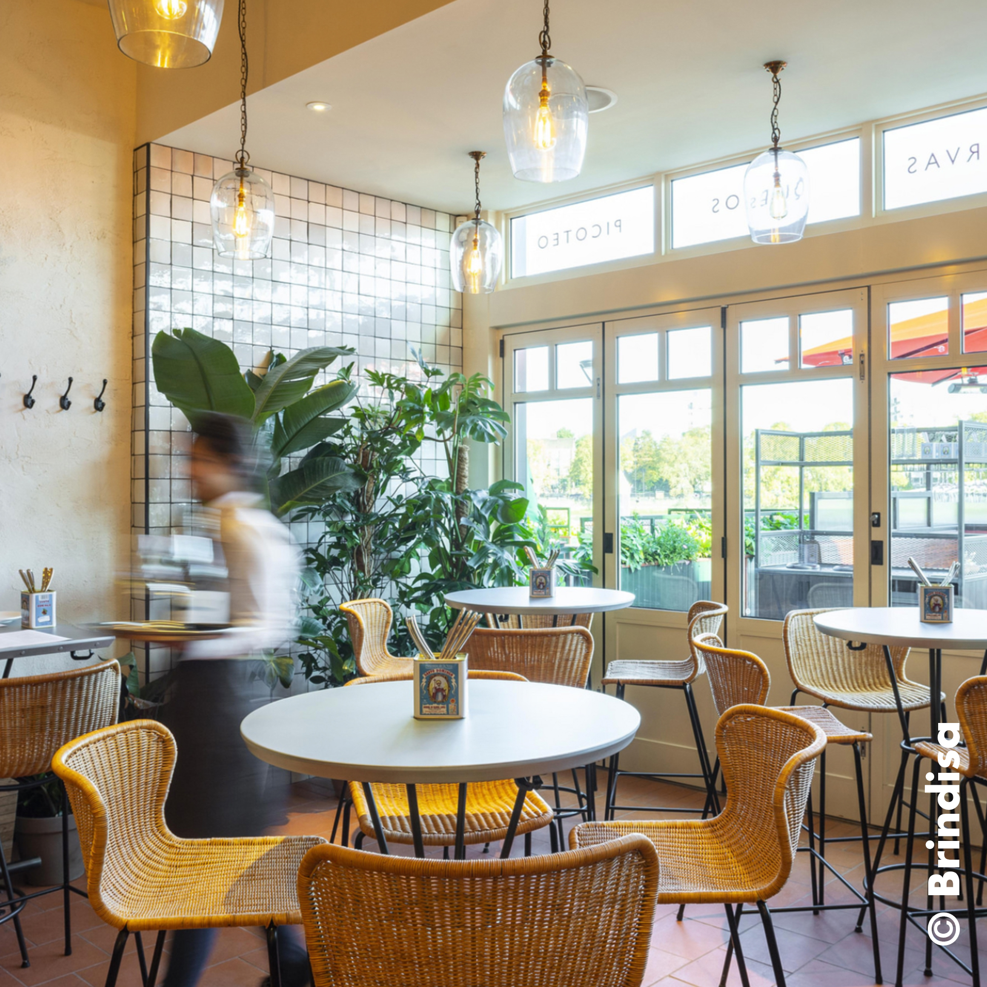 London dog-friendly restaurants