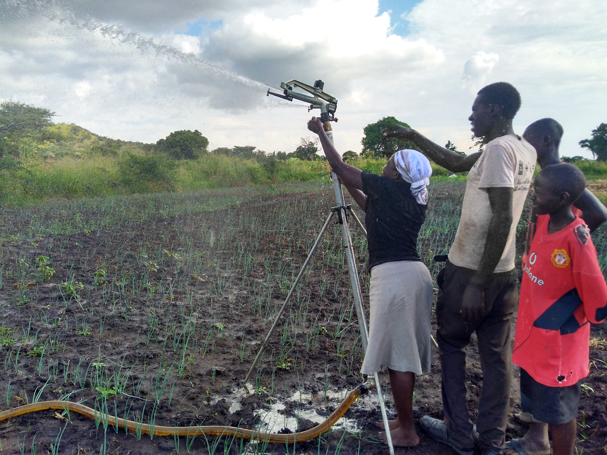 Horticulture irrigation group members work together to set the rain gun. This system is supplied with water from Lake Kyoga via a petrol-powered pump and a series of rigid and flexible piping, which members can easily move between plots.