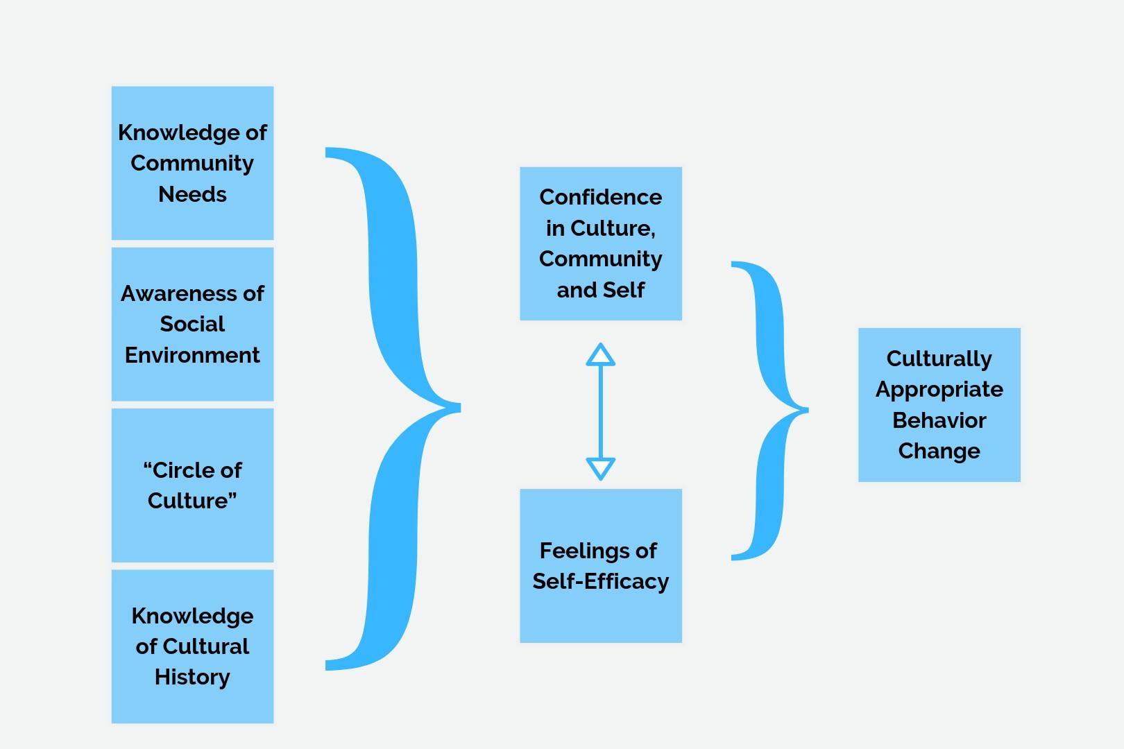 Confidence in Culture  - Conceptual Model