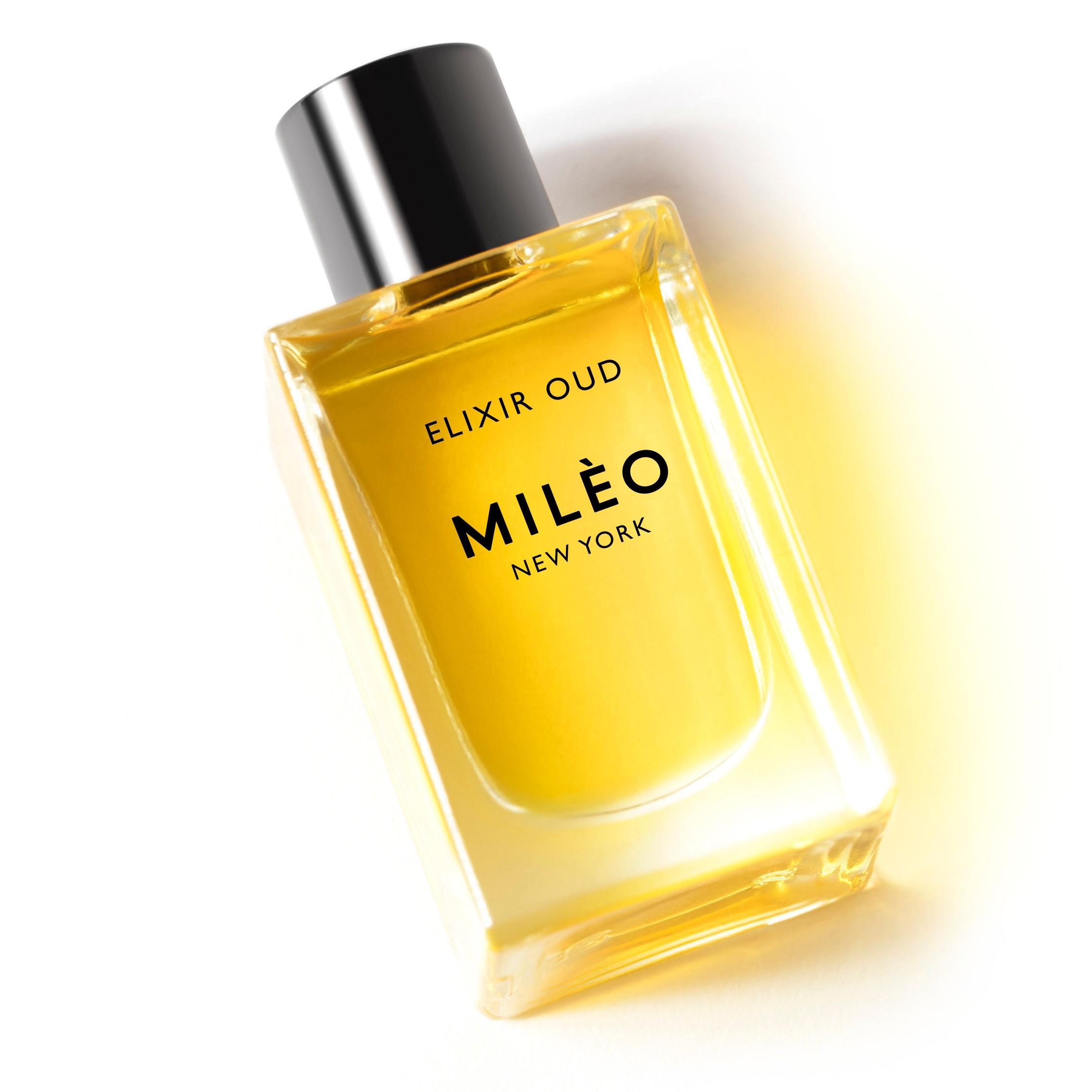 Gold Elixir Press page website.jpg
