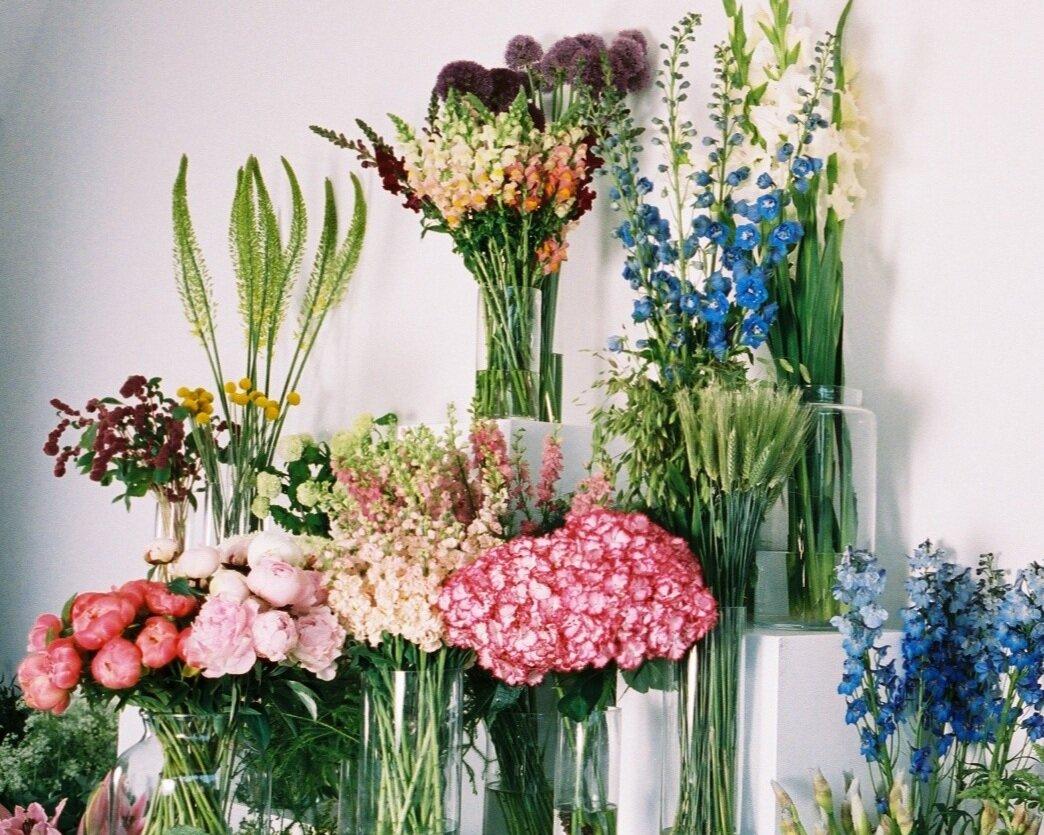sage+flowers+peckham