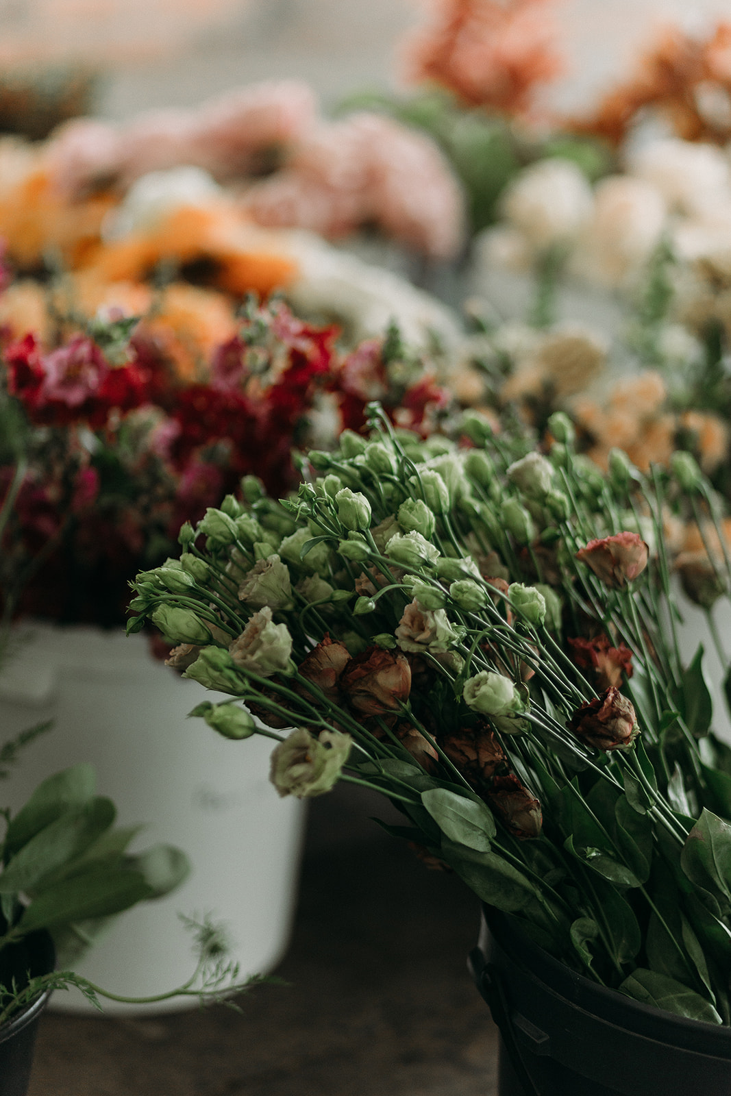 Flower Arranging Workshop in Cape Town, Johannesburg