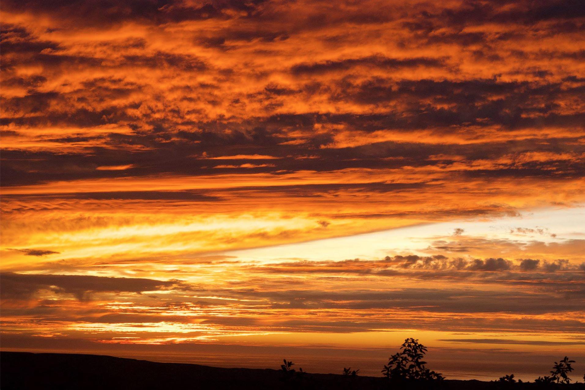 sunset in pt reyes 2.jpg