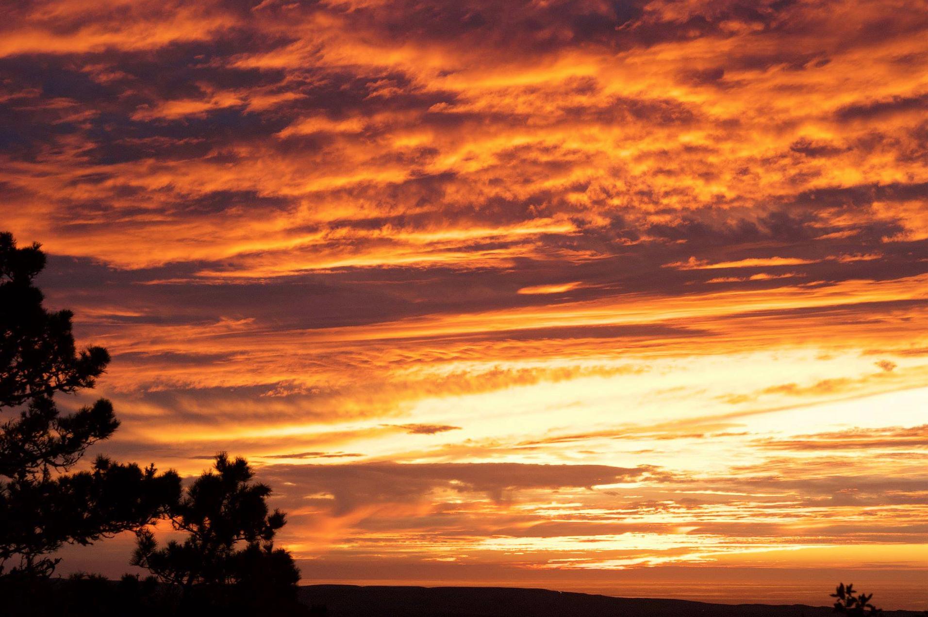 sunset in pt reyes.jpg