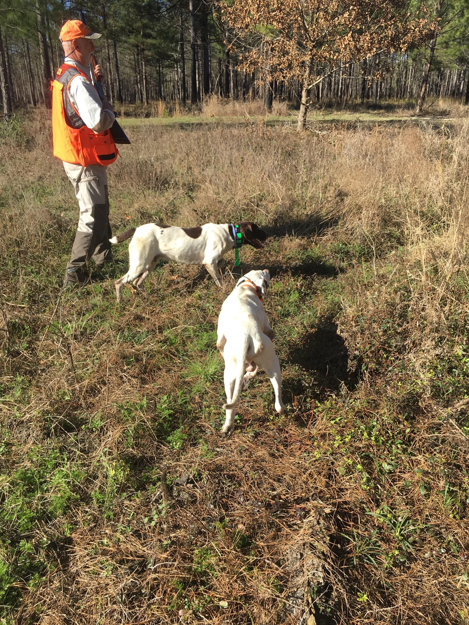 Southern Plantation Style Hunts