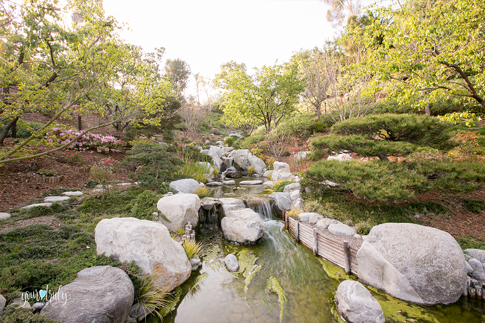 Wedding Photography Packages - San Diego, CA - Japanese Friendship Garden - Beautiful view of the garden.