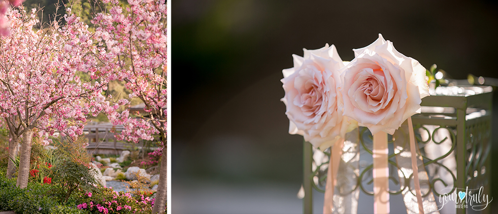 Wedding Photography Packages - San Diego, CA - Japanese Friendship Garden - Left: Sakura tree in full bloom; Right: Pink roses.