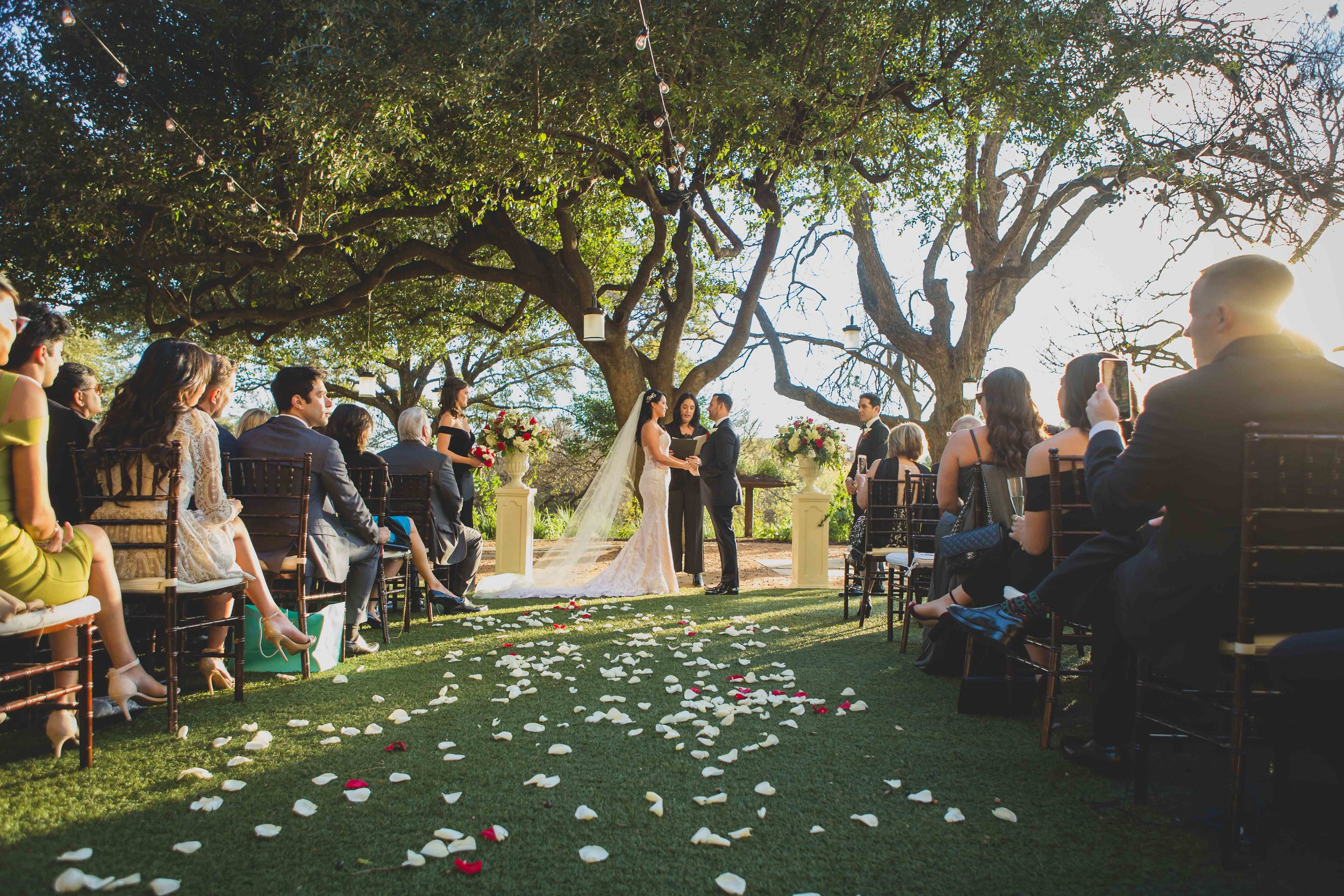 A wedding ceremony under a large tree.