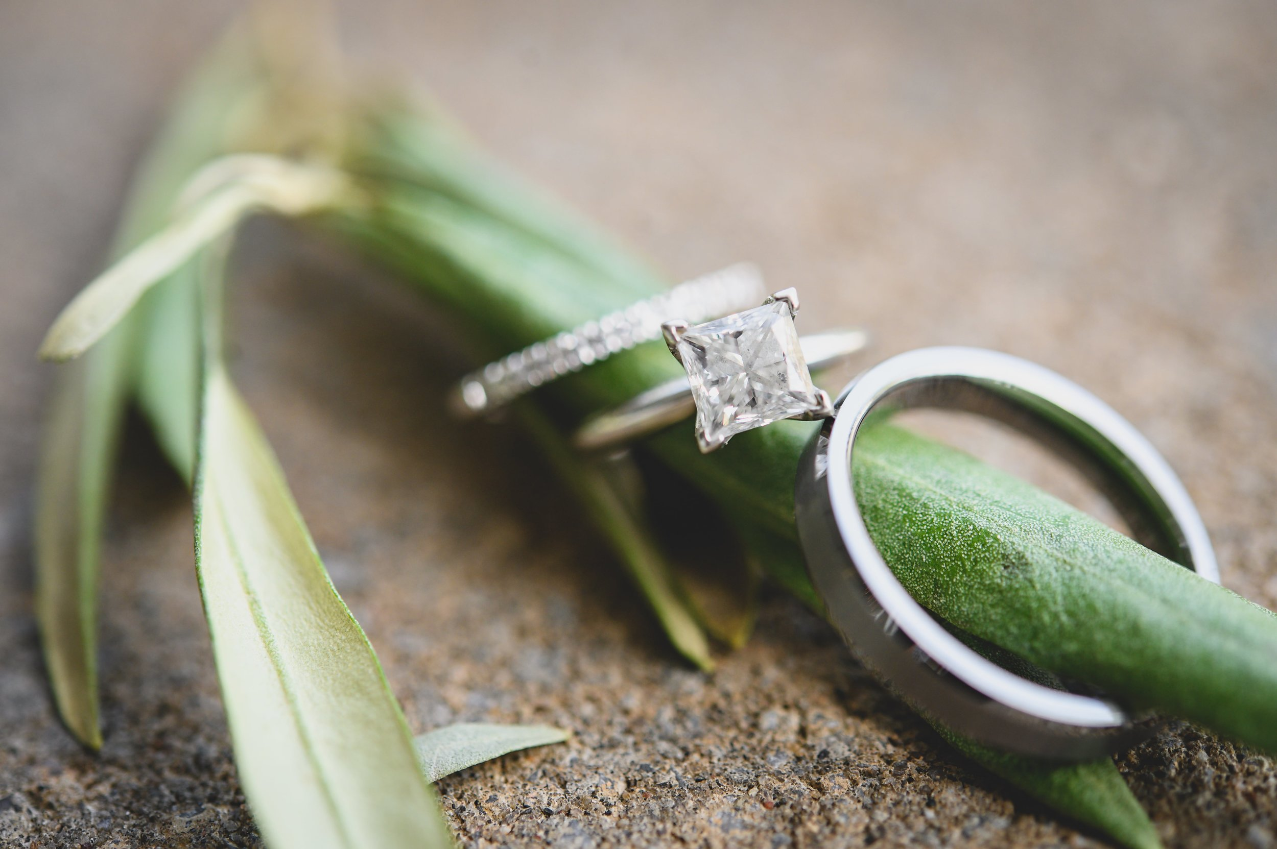 Wedding bands on the green stalk of a flower.