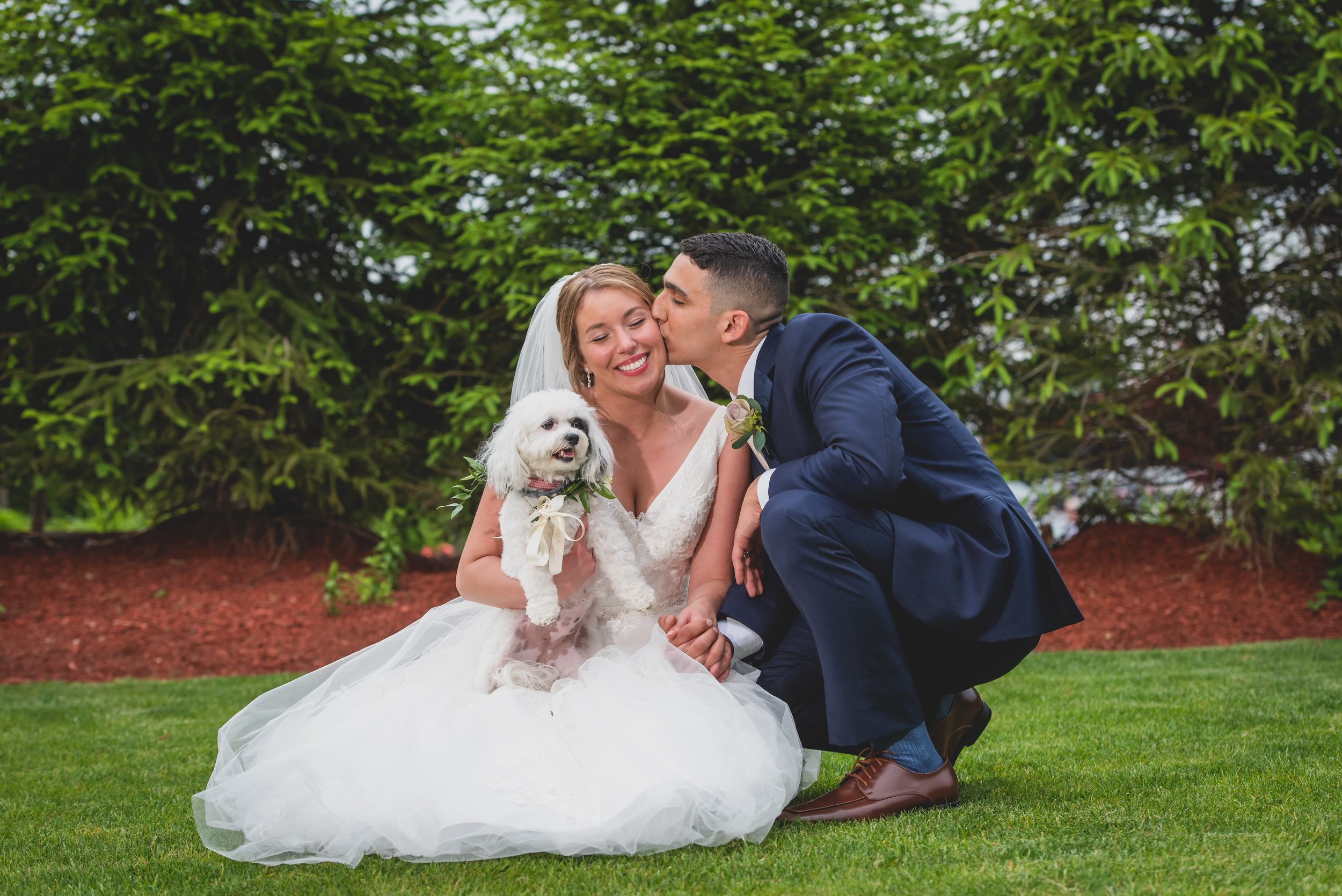 The groom kissing his bride on the cheek while kneels in the grass holding their black and white lap dog.