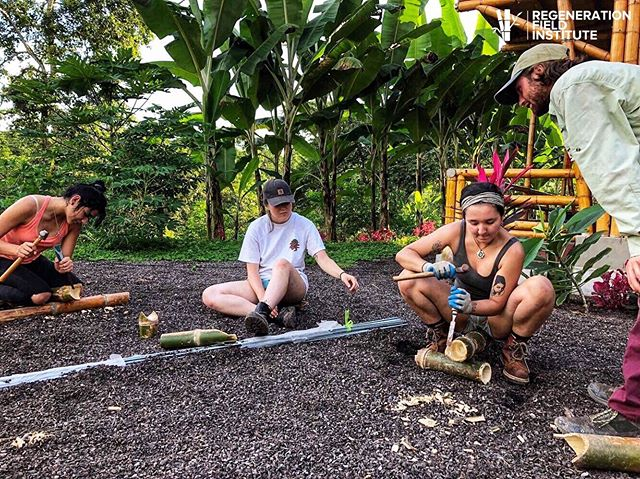 Explore the craft of bamboo building: cuts, joints, and new and traditional methods. At Regeneration Field Institute we teach the fundamentals of design with regenerative materials. Getting to intimately know the properties and fibers of bamboo opens up a world of possibility for our projects and our planet. 🎍💪🏽👩🏻🔧🏗🛠🌳 • • #bamboo #bambooconstruction #bambooarchitecture #engineering #environmentalengineering #buildingworkshop #naturalbuilding #bamboobuilding #ecomovement #ecofeminism #engineeringstudents #students #university #course #womeninconstruction #womeninengineering #designbuild #design #build #construction #thefutureisfemale #ecuador🇪🇨 #sustainabletechnology