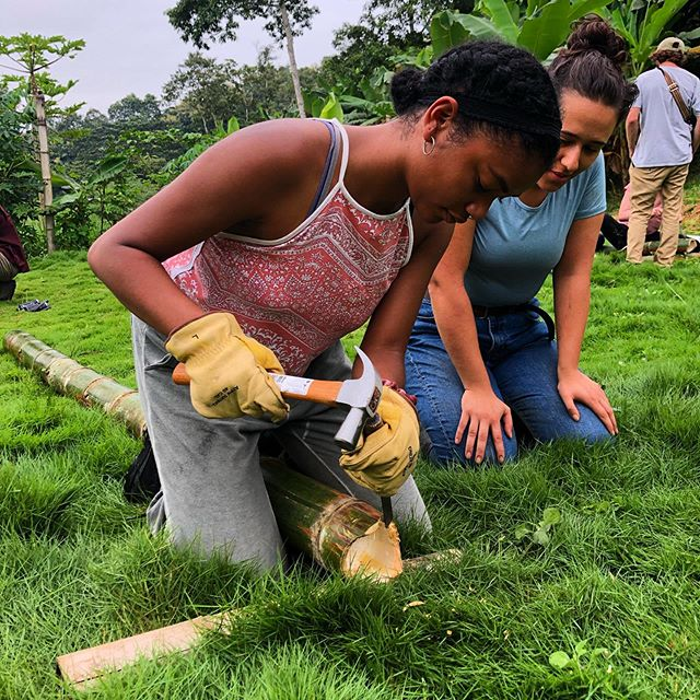 UC Berkeley architecture and conservation ecology students, Nyah Tisdell and Alevtina Sideleva, learn bamboo cuts and joints in our Intensive Introduction to Bamboo Workshop hosted on the farm by Regeneration Field Institute! @regenerationfieldinstitute 🎍💪🏾🎋👩🏾‍🔧👩🏽‍🔧 #bamboo #bamboocourse #bamboobuilding #buildingworkshop #womenpower #womeninconstruction #thefutureisfemale #guadua #bamboofarm #bambooconstruction #bambooarchitecture #bamboocarpentry #carpentry #carpentryworkshop #ecuador #handsondesign #handsonworkshop #farmlife #tropical #universityofcaliforniaberkeley #adventure #learning #farm #womeninstem #womeninarchitecture #womenindesign #womeninconservation