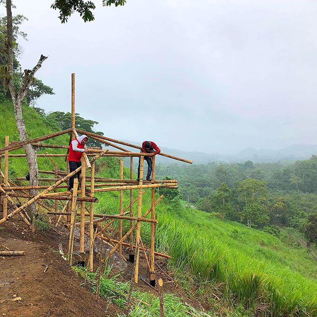 Great progress on building and earthworks projects last week. We worked together with Ecuadorian and United States students to teach keypoint mapping techniques and bamboo building to make a chicken coup and the lookout pictured here. #sustainabletechnology #permaculture #agroecologia #bamboocourse #bambu #cañaguadua #bambuseros #chone #manabi #allyouneedisecuador