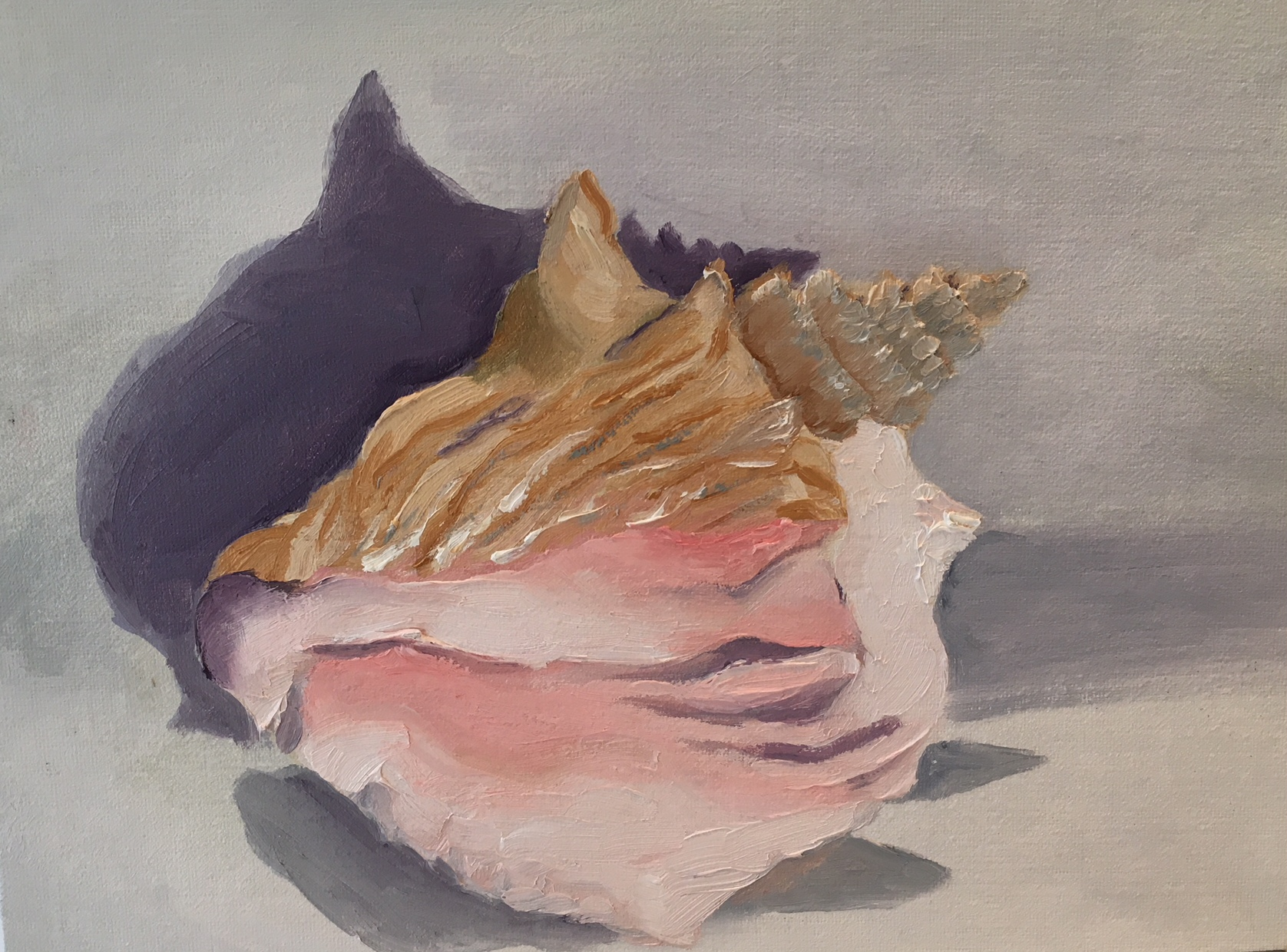 """Pink Conch"" 