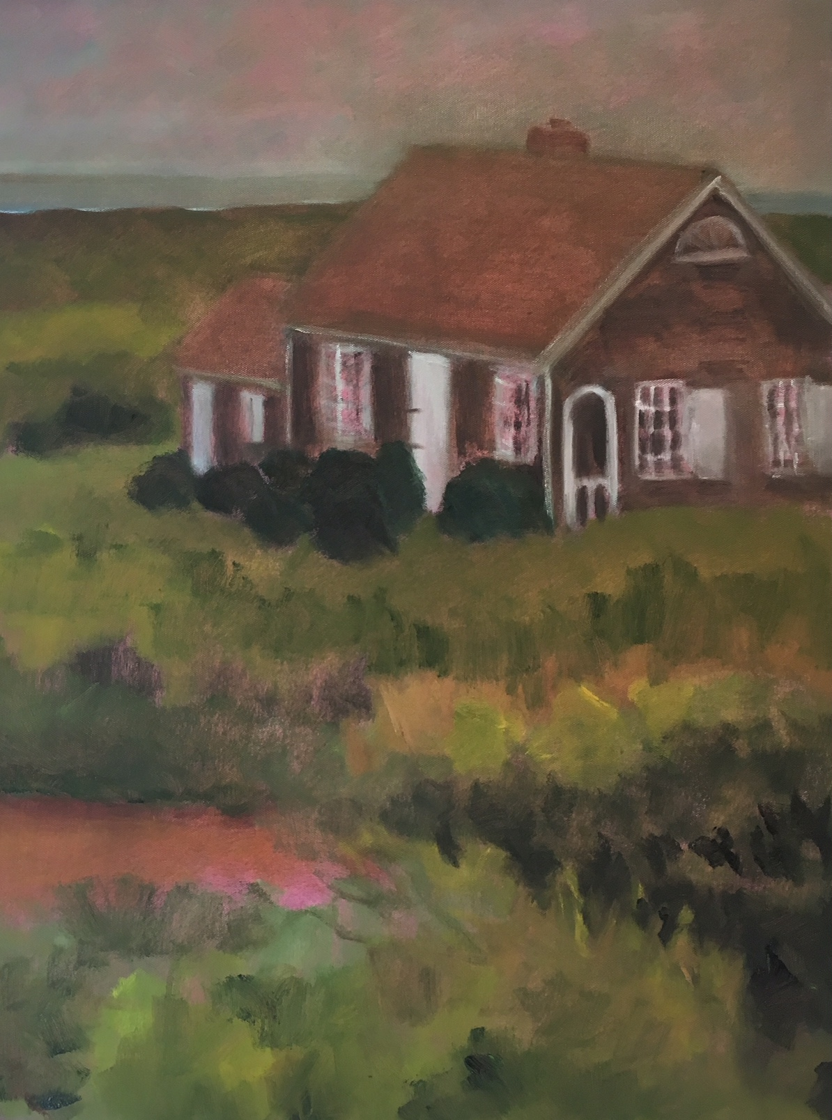 """Pink Dusk House"" 