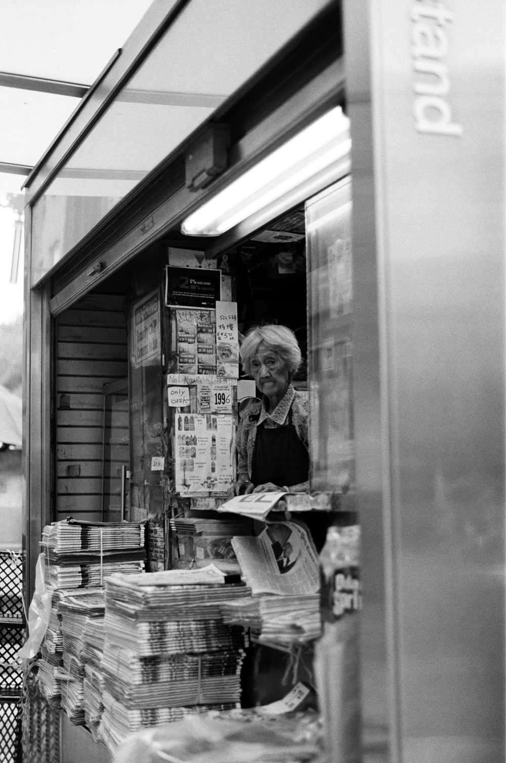 Shirley-Cai-Chinatown-7.png