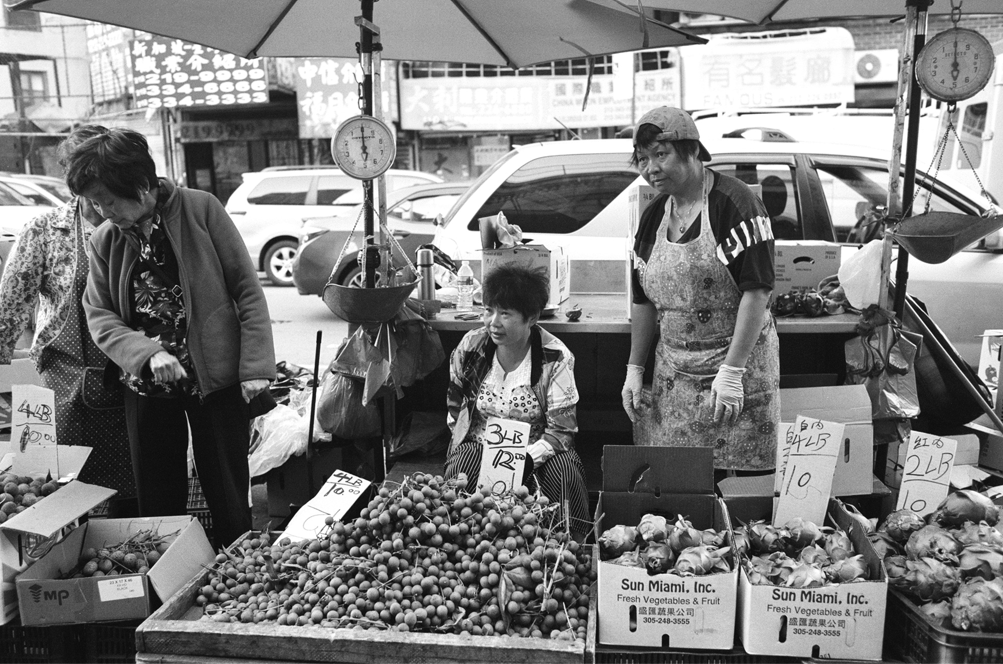 Shirley-Cai-Chinatown-22.jpg