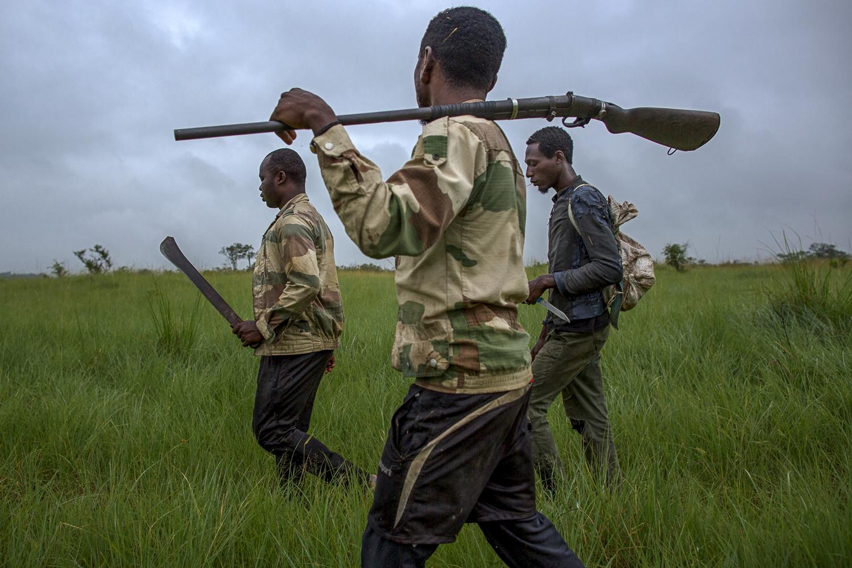 Poachers walking trough the savannah / Gabon - 2017