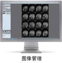 brain-scan-3.jpg