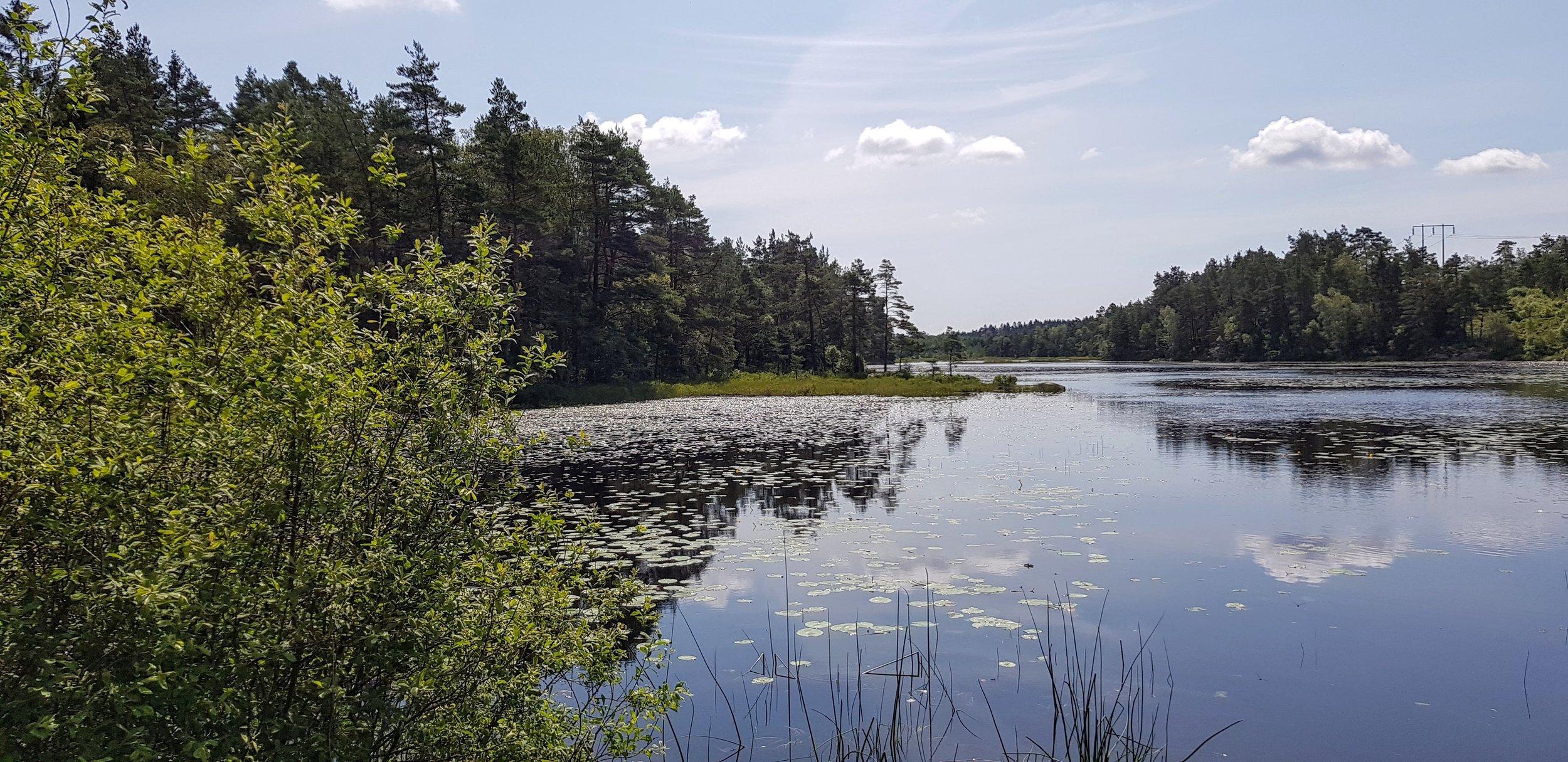 Vackra Sverige.