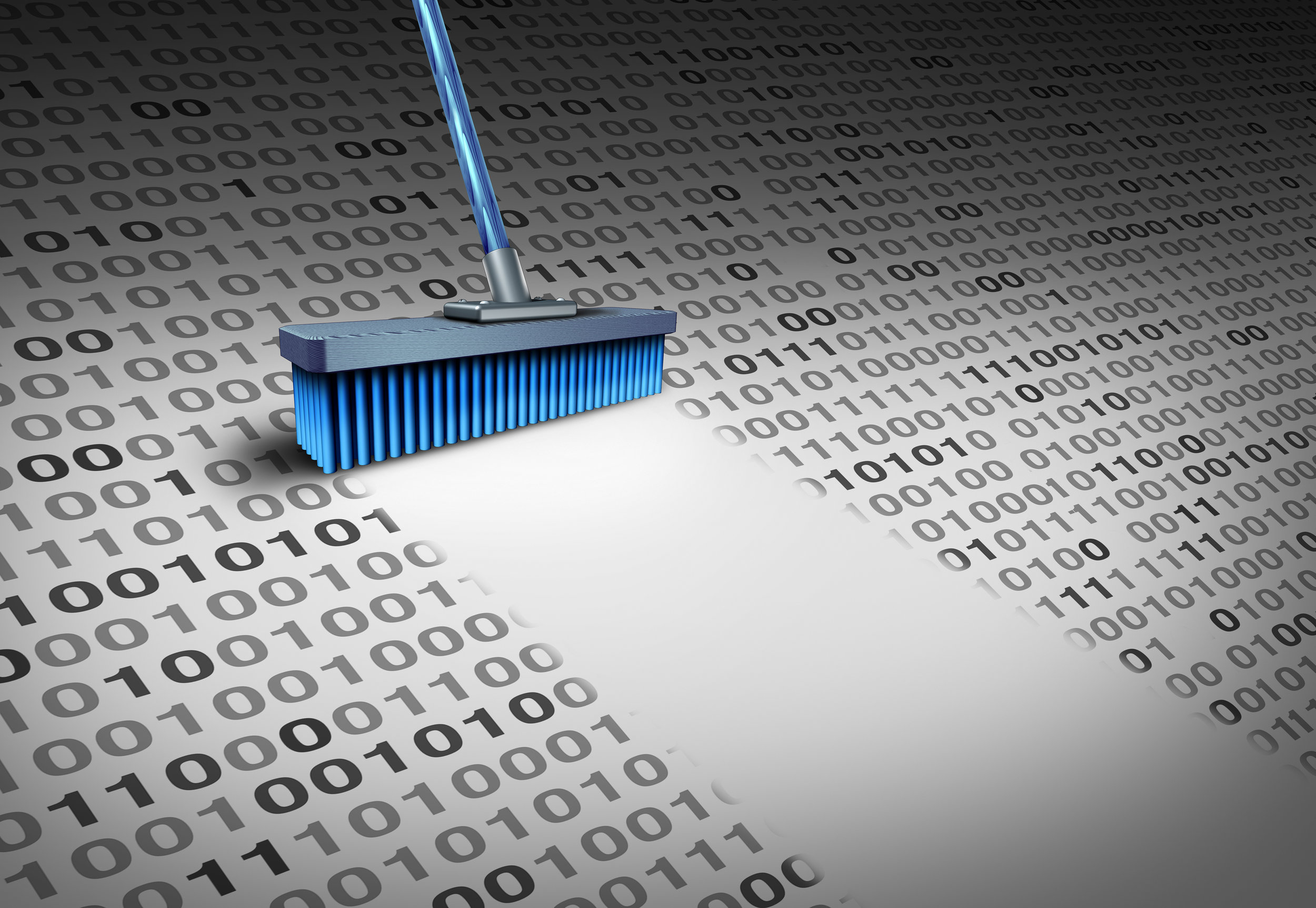 Data Cleansing Service -