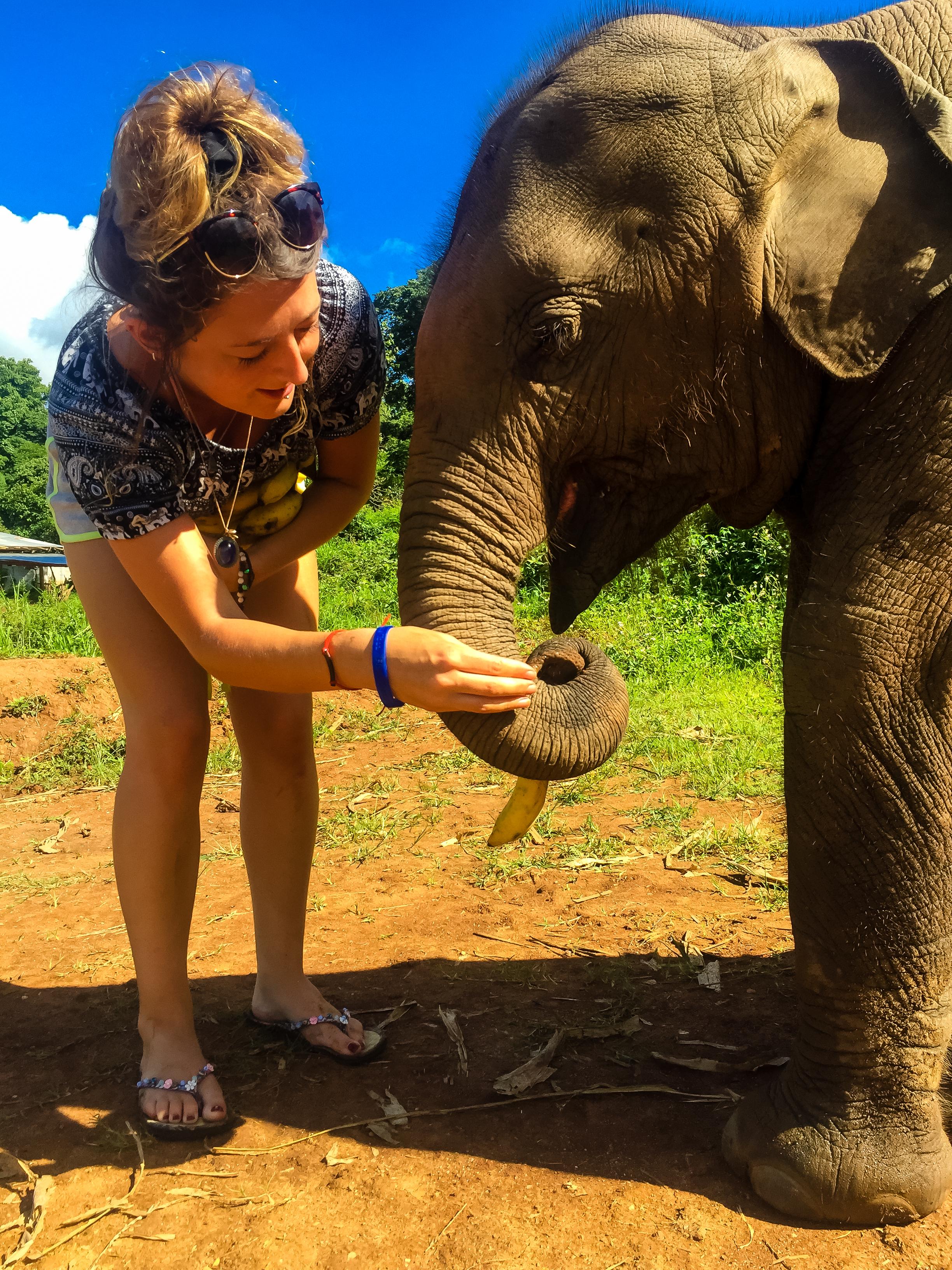 Chiang Mai - Elephant Sanctuary - Solo21.jpg