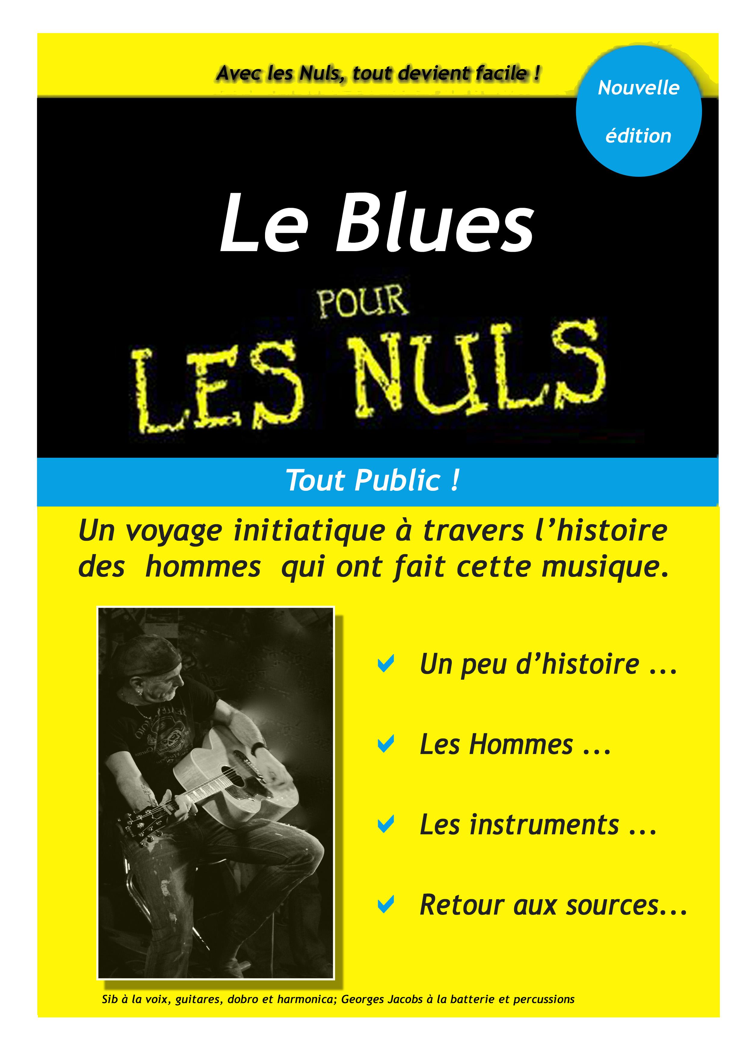 Le blues pour les nuls-1.jpg
