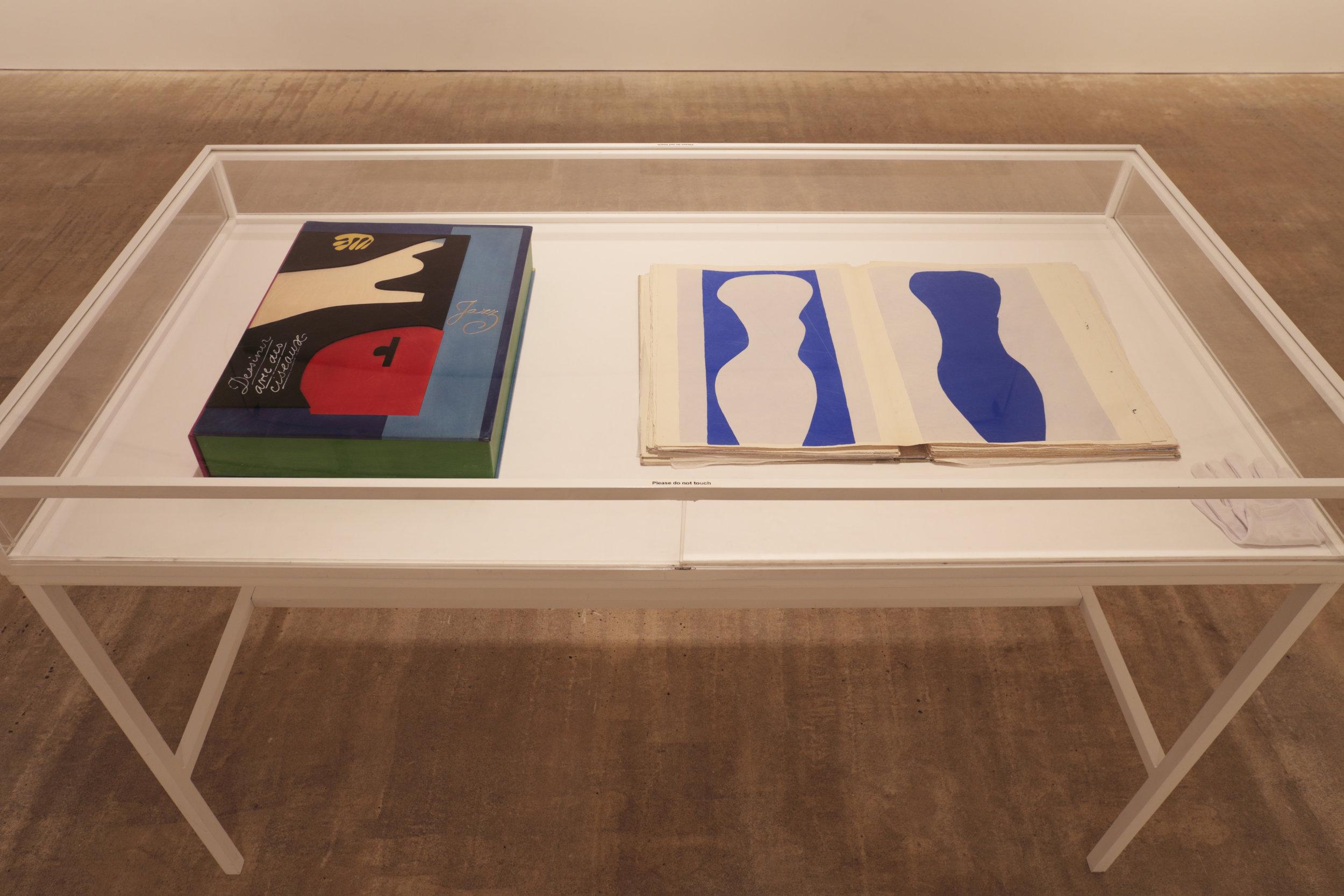 Matisse installation 2017.6.jpg