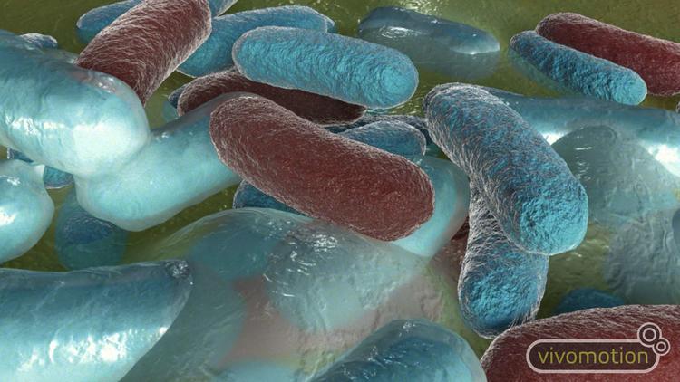 3d+animation+bacterial+raincoat.jpg