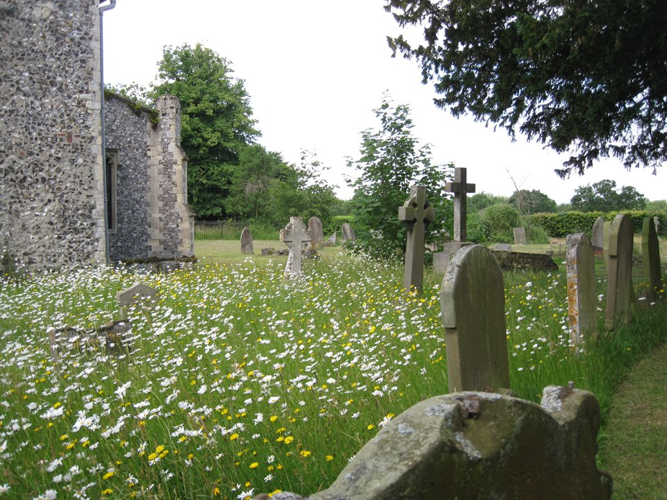 Wroxham-churchyard-2-Wroxham-Emily-Nobbs-13-June-2013-(00000003).JPG