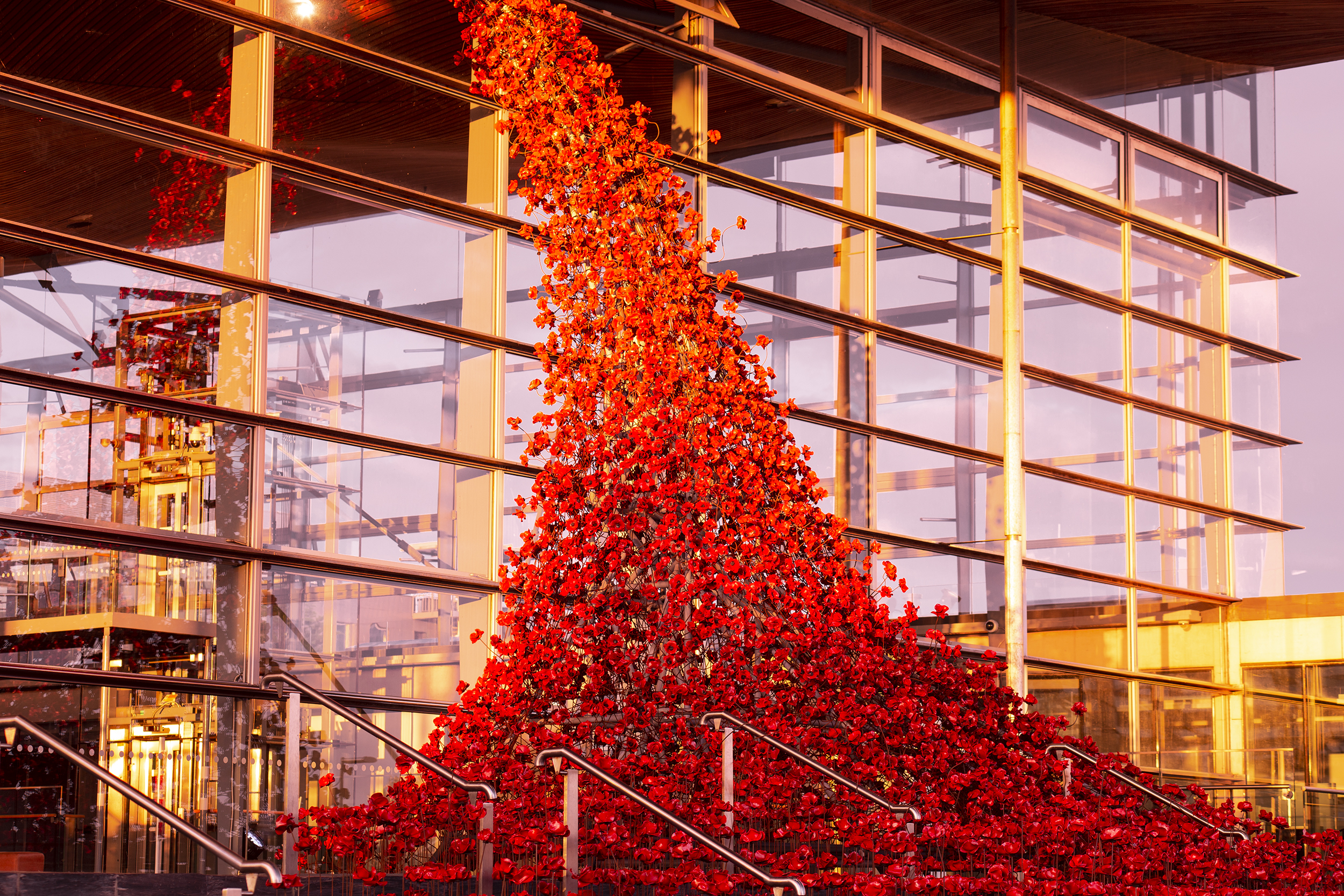 Weeping Window installation, Senedd, Cardiff