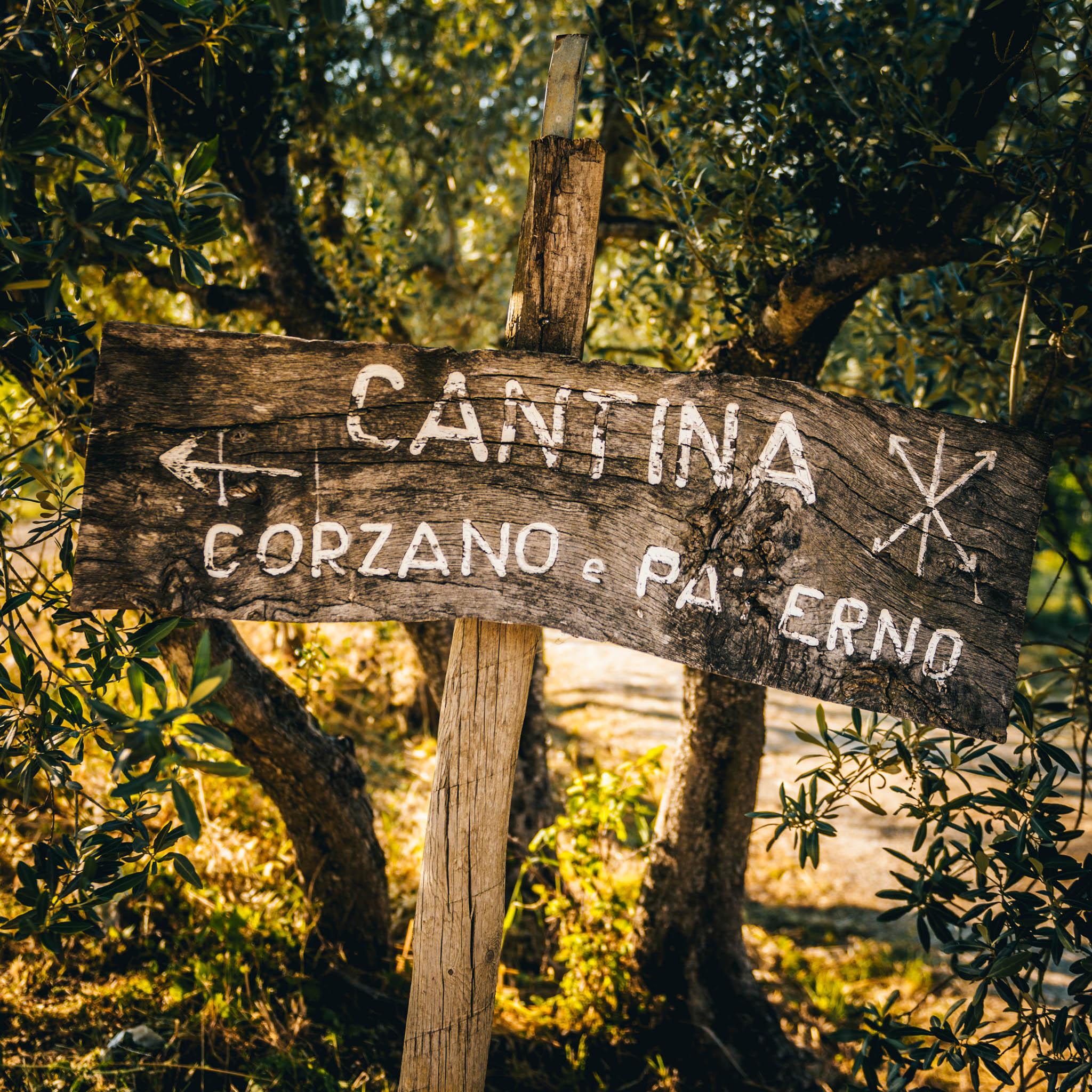 Corzano e Paterno-16.jpg