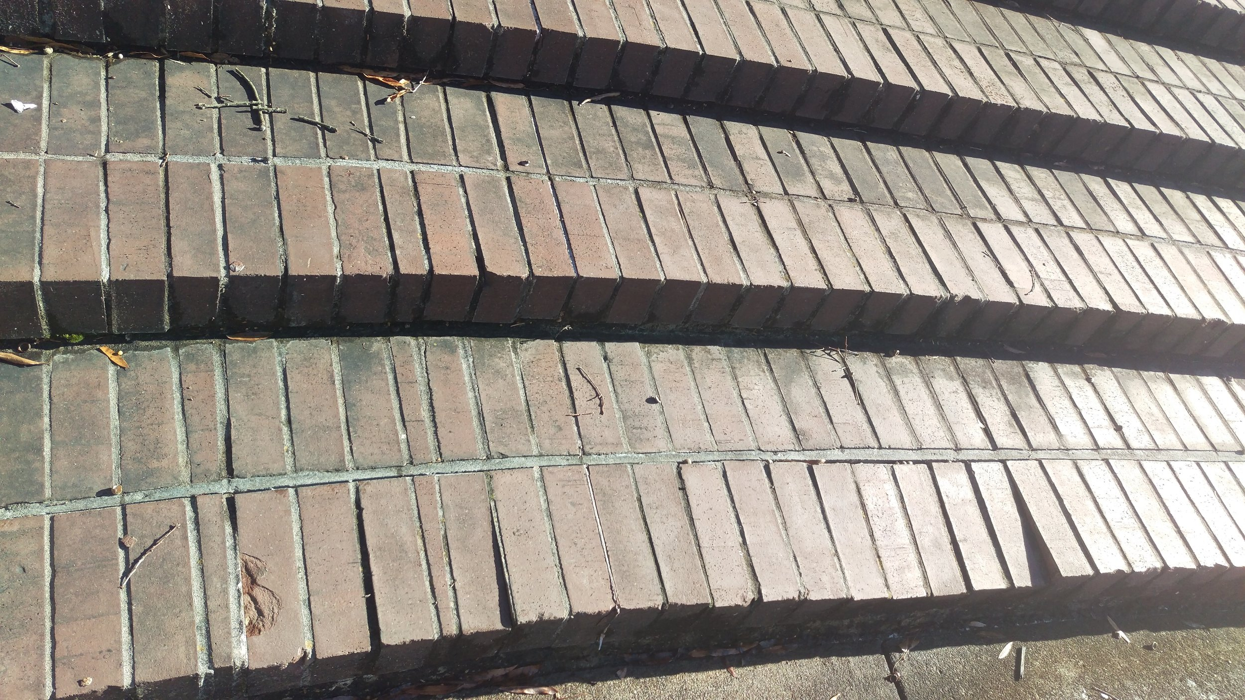Deteriorating brick steps at the City-County Building Entry Plaza