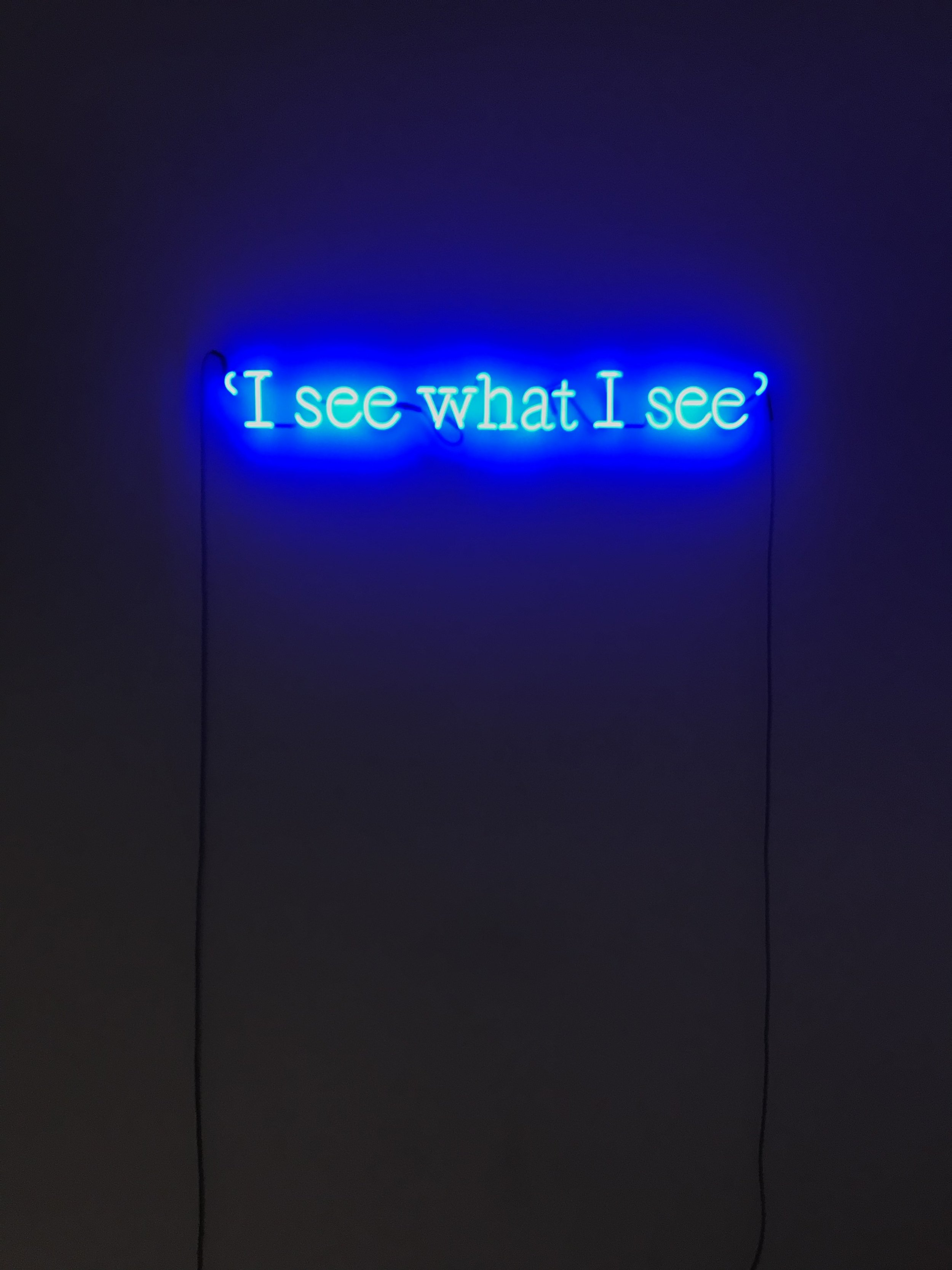 "Joseph Kosuth, ""P.G. #9 (I see what I see.)"""