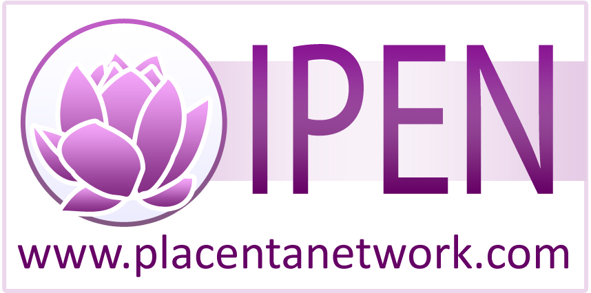 IPEN_logo_website_big.jpg