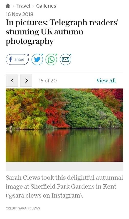 Screenshot_20181116-220546_Chrome.jpg