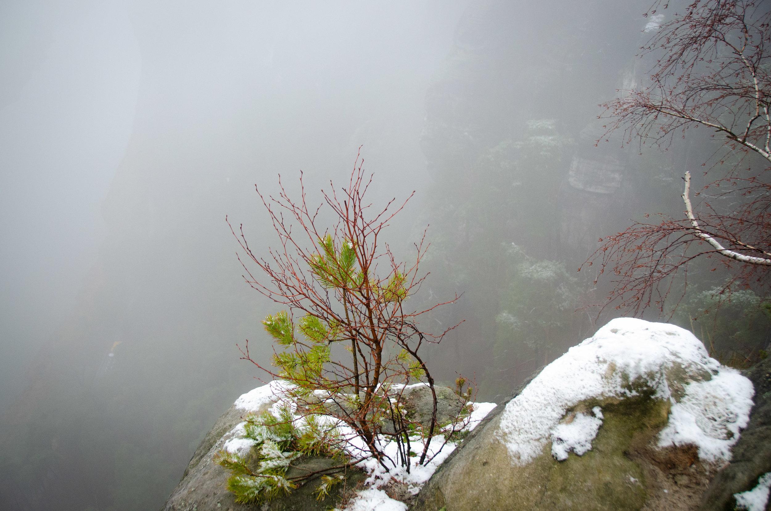 saxon switzerland. hiking