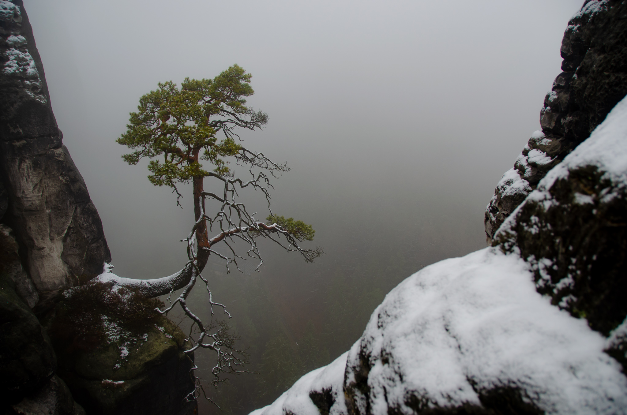 Hiking in the snowy Saxon Switzerland National Park